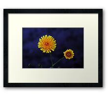 Dandy Lion Delight Framed Print