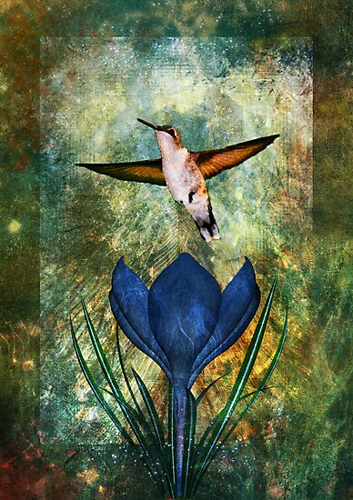 Hummingbird and Crocus by Alisa Gonzalez