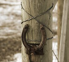 Fence by anderson14