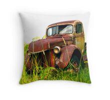 Grass Roots Rustbucket Throw Pillow