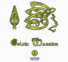 Celtic Warrior  by RangerRoger