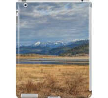 Moody Morning iPad Case/Skin