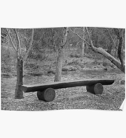 river bench Poster
