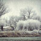 Frozen World by AnnieSnel