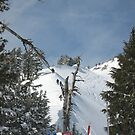 mammoth mountain california by noel aarons