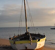 Dhow on the beach by jacojvr