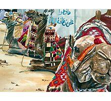 Safinat al-Barr Photographic Print