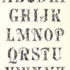 Anatomical Alphabet by 4stringwarrior