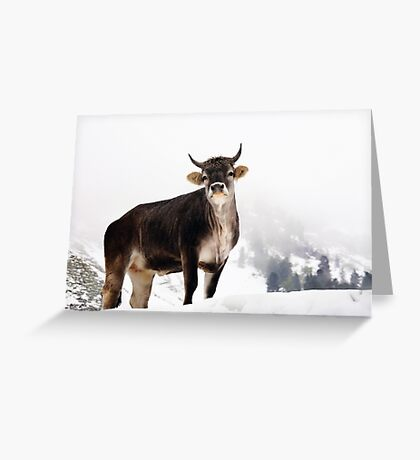 I Don't Like Snow Greeting Card