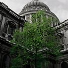 life in the st pauls courtyard by Mark Reed