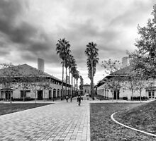 One Day in Stanford / Study 4 by joeschmied