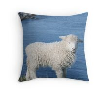 Coastal Spring Throw Pillow