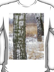 Winter Forest 3 T-Shirt