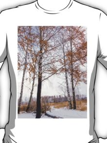 Winter Forest 4 T-Shirt