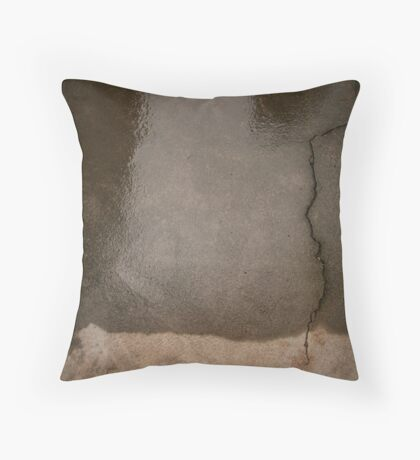To The Ends Of The Earth. Throw Pillow