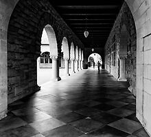 One Day in Stanford / Study 6 by joeschmied