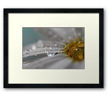 Raindrop Kisses Framed Print