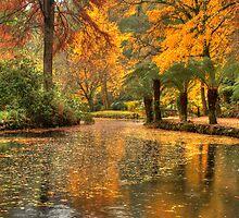 Alfred Nicholas Gardens - Lake   by Andrew Schweitzer