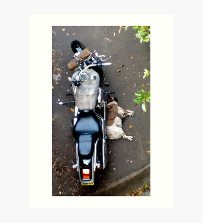Easy rider Art Print