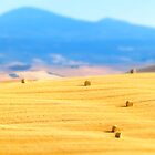 val d'orcia by ralph