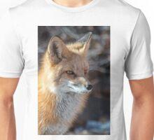 First fox of 2015 Unisex T-Shirt