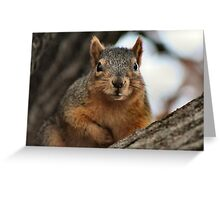 Pleased to meet you! I heard you have food... Greeting Card
