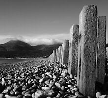 Murlough Beach View Mono by Wrayzo