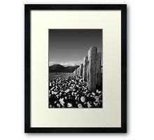 Murlough Beach View Mono Framed Print
