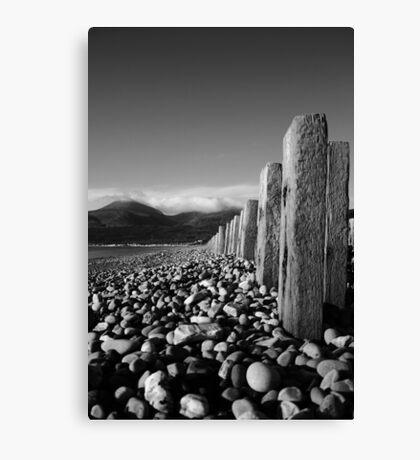 Murlough Beach View Mono Canvas Print