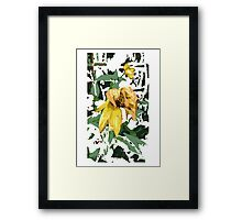 Yellow Flowers in Camouflage  Framed Print