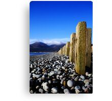 Murlough Beach View Canvas Print