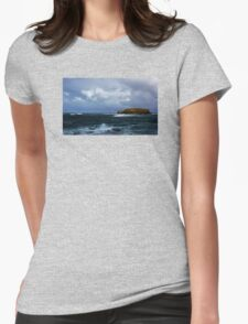 Sheep Island Womens Fitted T-Shirt