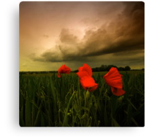 Stop By Canvas Print