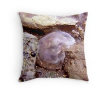 jammed jelly ... Throw Pillow