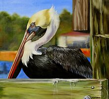 Bay St. Louis Pelican by Phyllis Beiser