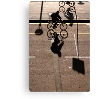 Crossing Paths Canvas Print