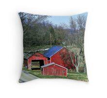 Rural Setting Throw Pillow