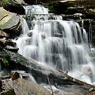 Ricketts Glen - Cayuga Falls by James Wheeler