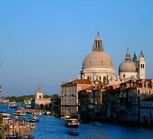 Santa Maria della Salute and the Grand Canal by Anya  Cristina