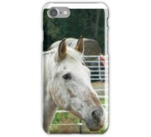 Ranch Life iPhone Case/Skin