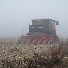 Fog Closes in on the Farm by MotherNature