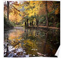 Autumnal Scene II Poster