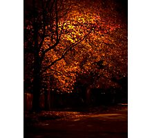 Evening Color Photographic Print