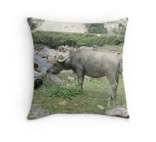 Buffalo Lunchtime Throw Pillow