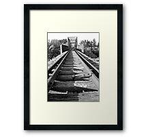 Black and White Disused Railway Bridge Framed Print