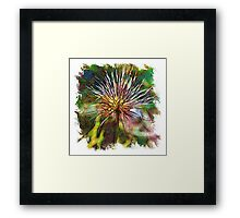 The Atlas Of Dreams - Color Plate 136 Framed Print
