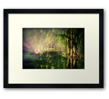 Fairy in Pink bubble in Serenity Forest Framed Print