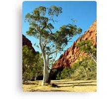 Simpsons Gap, Western Ranges, Alice Springs, Northenr Territory, Australia Canvas Print