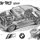 BMW M3 (e46) Cutaway by Steve Pearcy