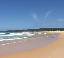 Looking homeward on Hobart Beach by Martin Anski